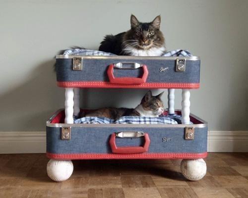 лежанки для больших и маленьких собак и котов фото