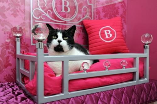 Красивая лежанка для кота