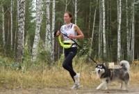 Каникросс: бег с собакой