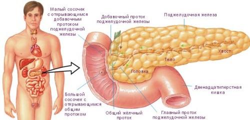 Osnovnye-prichiny-i-metodiki-lechenie-pankreatita-2