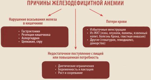 Iavnye-i-skrytye-prichiny-anemii-u-zhenshchiny-1