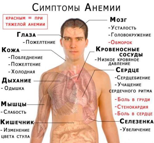 Iavnye-i-skrytye-prichiny-anemii-u-zhenshchiny-3