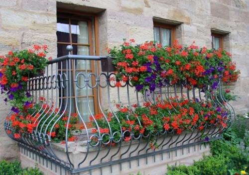 Kak-ukrasit-balkon-tcvetami-sovet-po-obustroistvu-kvartirnogo-tcvetneyka-4