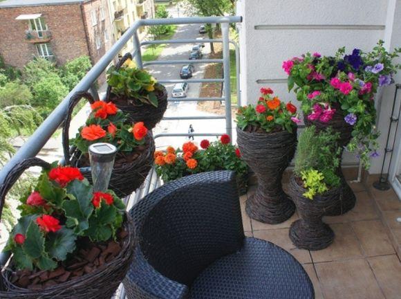 Kak-ukrasit-balkon-tcvetami-sovet-po-obustroistvu-kvartirnogo-tcvetneyka-5