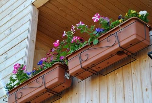 Kak-ukrasit-balkon-tcvetami-sovet-po-obustroistvu-kvartirnogo-tcvetneyka-8