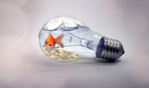 Что можно сделать из лампочки своими руками