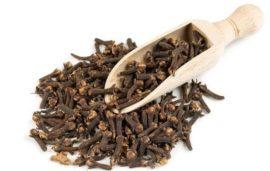 poleznye-svoistva-gvozdiki-primenenie-gvozdichnogo-masla-kulinarii-meditcine-7