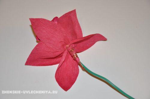 buket-orhideia-iz-konfet-gofrirovannoi-bumagi-master-class-21