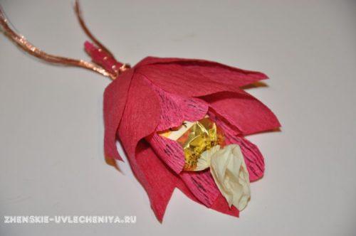 buket-orhideia-iz-konfet-gofrirovannoi-bumagi-master-class-23