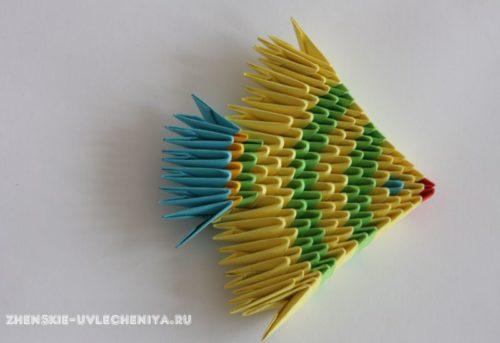 modulnoe-origami-rybka-skhema-sborki-dlia-nachinaiushchikh-s-poshagovymi-foto-16