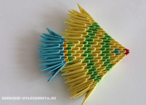 modulnoe-origami-rybka-skhema-sborki-dlia-nachinaiushchikh-s-poshagovymi-foto-17
