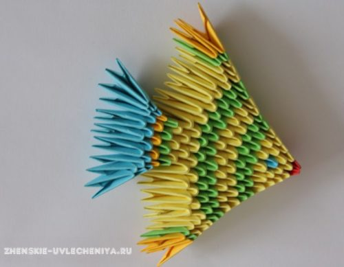 modulnoe-origami-rybka-skhema-sborki-dlia-nachinaiushchikh-s-poshagovymi-foto-20