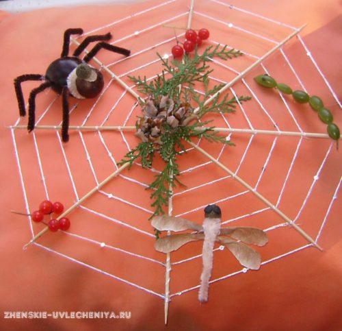 Pautina-s-paukom-iz-kashtana-i-strekozoi-iz-prirodnykh-materialov-svoimi-rukami