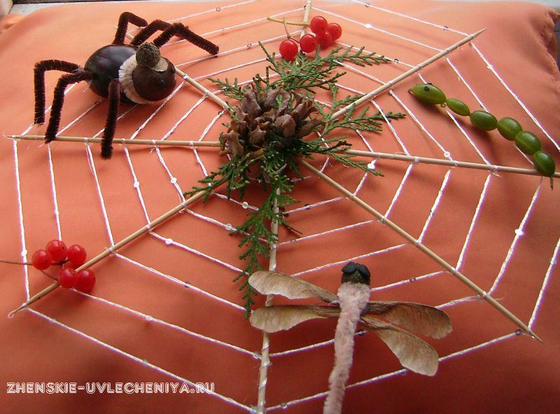 Поделка паук на паутине из природного