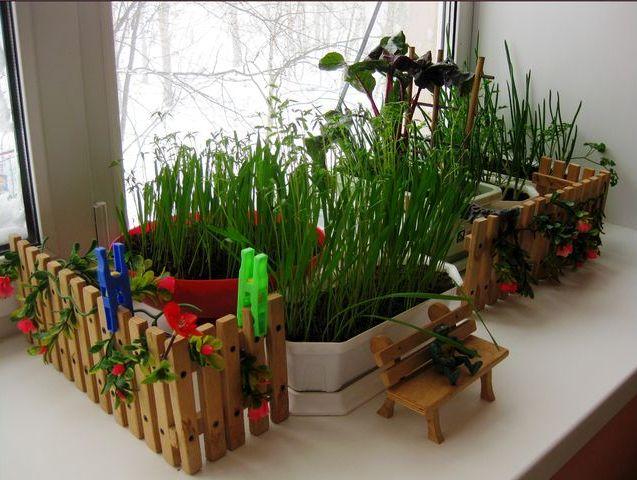Как оформить уголок огород в детском саду своими руками фото 25