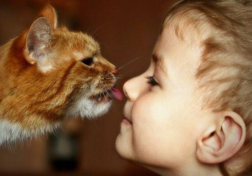 какое животное выбрать ребенку