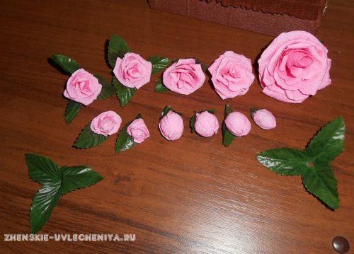 розы и бутоны