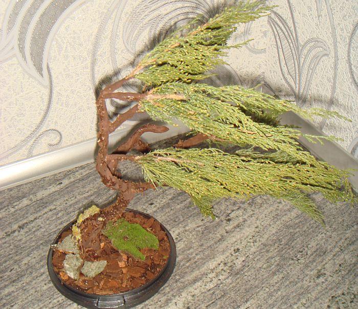 iskusstvennyi-bonsai-svoimi-rukami-32 Как сделать бонсай своими руками поэтапно?